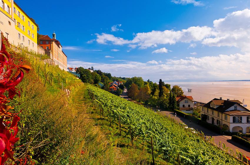 Vineyards The Medieval City Of Meersburg On Lake