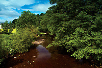 The River Gryfe or the River Gryffe at Crosslee, Renfrewshire