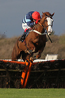 Race winner Valdez ridden by Robert Thornton in jumping action during the rewards4racing.com Novices Hurdle