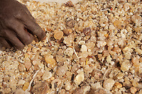 Gum Arabic from the Field, Waiting to be Cleaned by Hand.  Niger, West Africa.