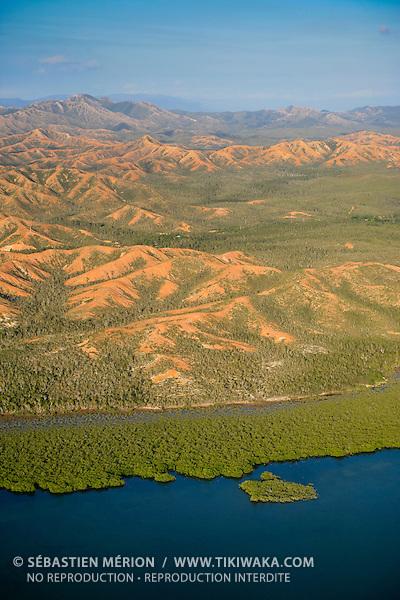 Mangrove dans l'Anse de Pouani, Poum, nord de la Nouvelle-Calédonie