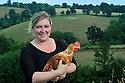 24/06/14 - LA CHAPELLE - ALLIER - FRANCE - Elevage de poulet fermier de Sandra SZYPULA - Photo Jerome CHABANNE
