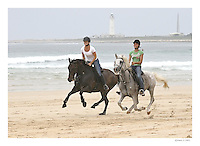 Seasoned horse riders racing on the 3 kilometer stretch of Cape St Francis beach.