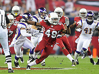Dec 6, 2009; Glendale, AZ, USA; Arizona Cardinals safety Rashad Johnson against the Minnesota Vikings at University of Phoenix Stadium. The Cardinals defeated the Vikings 30-17. Mandatory Credit: Mark J. Rebilas-