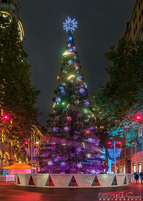 Martin Place Christmas Tree, Sydney, NSW, Australia