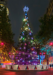 Martin Place Christmas Tree, Sydney, NSW, Australia