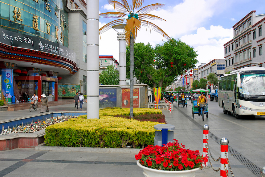 Flowers, fake palm tree, and rickshaws, outside the Santa Barbara Polo and Racquet Club, in the Chinese section of Lhasa, Tibet.