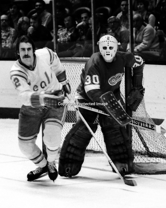 Seals Butch Williams and Detroit Red Wing goalie Terry Richardson. (1975 photo by Ron Riesterer)