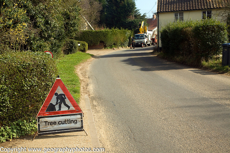 Tree cutting red triangular road sign in village street, Shottisham, Suffolk, England