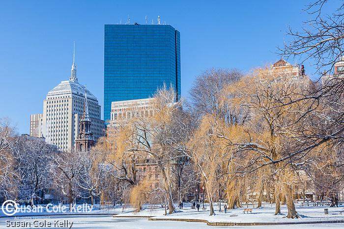 The Back Bay skyline over the Boston Public Garden, Boston, MA, USA