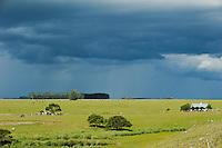 URUGUAY,  Villa Sara , Treinta y Tres, estancia and landscape /.URUGUAY Villa Sara, Farm und Landschaft im Gewitter