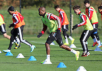 Pictured: Dwight Tiendalli Wednesday 05 November 2014<br />