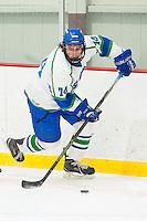 Men's Ice Hockey vs Wentworth_1-20-16