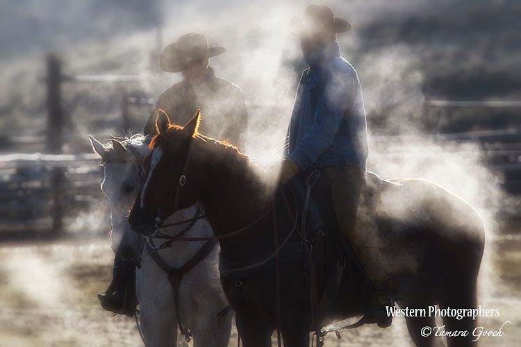 A photo of two cowboys surrounded by steam coming off of their horses on a cold morning. Cowboy Photos, riding,roping,horseback