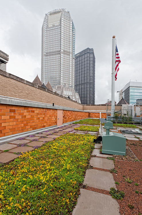 Green Roof - Allegeny County Office Building - in the pouring rain