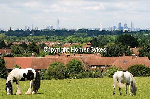London skyline The Shard The Gherkin skyscrapers housing urban horses.