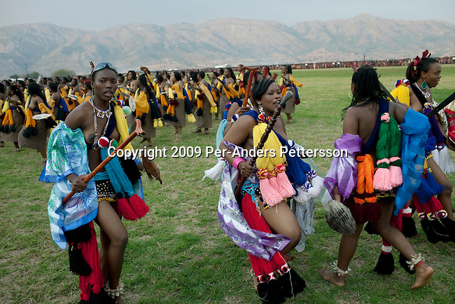LUDZIDZINI, SWAZILAND - AUGUST 30: Members of the royal Swazi family dance with young girls dance at a traditional Reed dance ceremony at the stadium at the Royal Palace on August 30, 2009, in Ludzidzini, Swaziland. About 80.000 virgins from all over the country attended this yearly event, the biggest in Swazi culture. It was founded to celebrate the beauty of Swazi women and girls. King Mswati III, and absolute monarch, was born in 1968 and he has 14 wives and many children. The king danced with his men in front of the 80.000 girls. Many of the girls hope to get noticed by the king and to be chosen as a future wife, a ticket from poverty and into a life of privilege and luxury. The country is one of the poorest in the world and it is struggling with a high prevalence of HIV-Aids and severe poverty. (Photo by: Per-Anders Pettersson)..