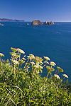 Cape Meares State Park, OR<br /> View of Three Arch Rocks and the Oregon coast from Cape Meares, Tillamook County