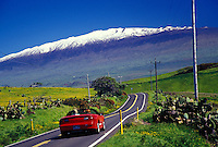 Waimea, Mountain Road #250 with snow peaked Mauna Kea in background
