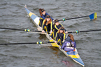Crew: 366  Sir William Perkins s Sch  Event: Girls J16 Fours<br /> <br /> Schools' Head of the River 2017<br /> <br /> To purchase this photo, or to see pricing information for Prints and Downloads, click the blue 'Add to Cart' button at the top-right of the page.
