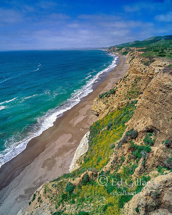 Sculptured Beach, Point Reyes National Seashore, California, Marin County, California