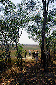 Zambia. Tourist safari group trekking on foot with armed park ranger guide.