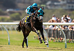 AUG 10: Billy Barttst with Flavien Prat up wins a maiden race at The Del Mar Thoroughbred Club in Del Mar, California on August 10, 2019. Evers/Eclipse Sportswire/CSM