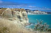 Cape Kidnappers Coastline, New Zealand