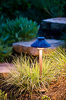 Garden light fixture illuminating stone step path with grasses
