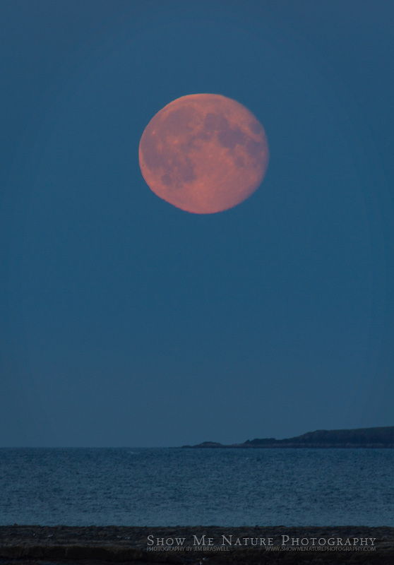 Moonrise over Shelikof Strait, taken from Hallo Bay Bear Camp, Alaska