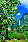 Yosemite Falls in Yosemite National Park, California. Camera: Canon EOS 630 on a tripod, Lens: 24-85mm zoomed to 24mm's, Film: Velvia ISO 50 rated @ ISO 40, Settings: f/8@1/250