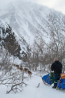 Sebastian Schnuelle in a narrow draw on the trail between the Rainy Pass checkpoint and Rohn in the Alaska Range during Iditarod 2009