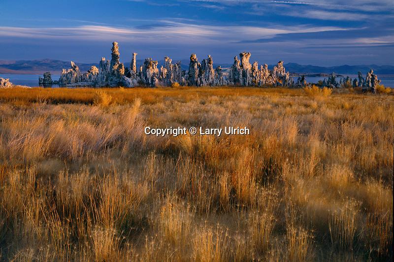 Grasses and tufa formations<br /> South Mono Tufa Area,  Mono Lake Tufa State Reserve<br /> Mono Basin National Forest Scenic Area<br /> Great Basin,  California