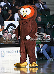 Hootie the Owl plays around during a time out in the NCAA  basketball game between the Florida International University Panthers and the University of North Texas Mean Green at the North Texas Coliseum,the Super Pit, in Denton, Texas. UNT defeated FIU 87 to 77