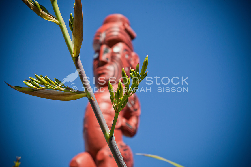 Maori Carving and Flax, Te Puia, Rotorua, New Zealand - stock photo, canvas, fine art print