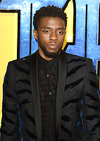 Black Panther European Premiere at the Eventim Apollo, Hammersmith, London on Thursday 8th February 2018<br /> <br /> Photo by Keith Mayhew