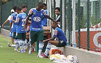 SAO PAULO, SP, 11 MARCO 2013 - TREINO PALMEIRAS -  O jogador Andre Luiz participa do seu primeiro treino reapresentação do Palmeiras depois do empate de O x O com o São Paulo pela 11 rodada do paulistao no ct da Barra Funda na capital nessa segunda-feira 11. (FOTO: LEVY RIBEIRO / BRAZIL PHOTO PRESS)