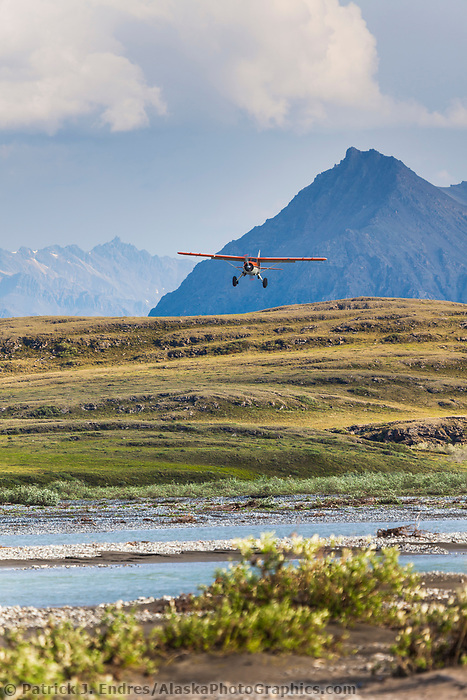 Bush pilot Dirk Nickisch of Coyote Air, approaches a landing strip in his De Havilland Beaver, along the Canning River, Arctic National Wildlife Refuge, Brooks range mountains, Alaska.