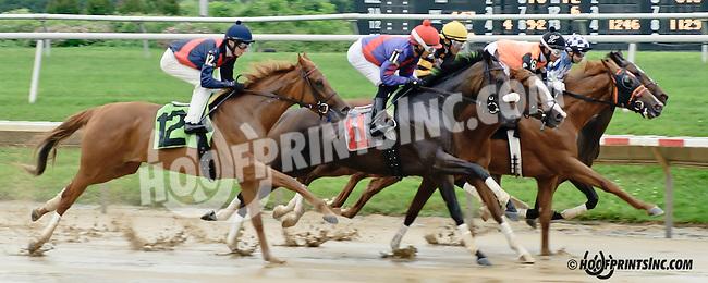 Luna Argenta winning at Delaware Park racetrack on 6/12/14