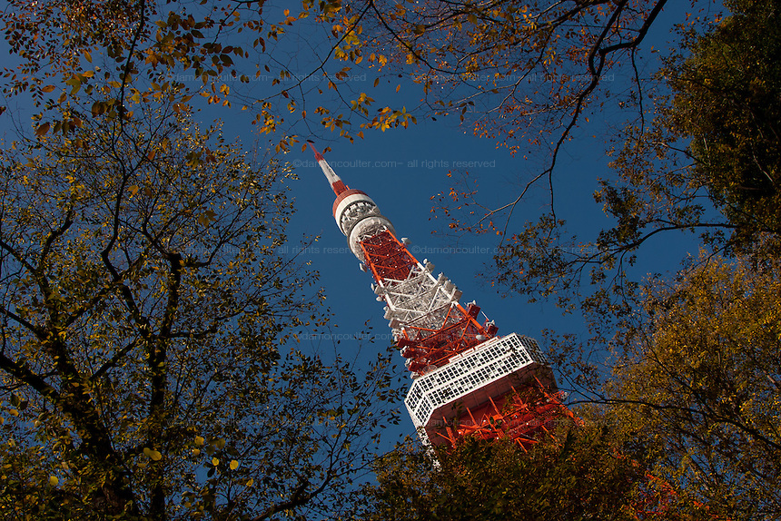 Tokyo Tower seen through Autumn trees. Tokyo, Japan. Saturday, December 2nd 2009
