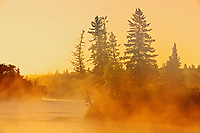 Fog rising off the Winnipeg River at sunrise in boreal forest<br /> Lac du Bonnet<br /> Manitoba<br /> Canada