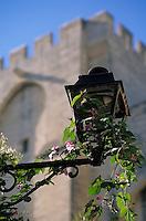 Europe/France/Provence-Alpes-Côte d'Azur/84/Vaucluse/Avignon: place de la Mirande vue, lanterne et vue sur le Palais des Papes