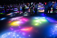 """The immersive installation in Team Lab Planets, constits of water with reflections of moving fish and flowers in Tokyo, Japan. It is called """"<br /> Drawing on the Water Surface Created by the Dance of Koi and People """""""