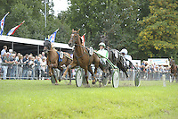 PAARDENSPORT: JOURE: 26-09-2016, Jouster Merke Koersen, ©foto Martin de Jong