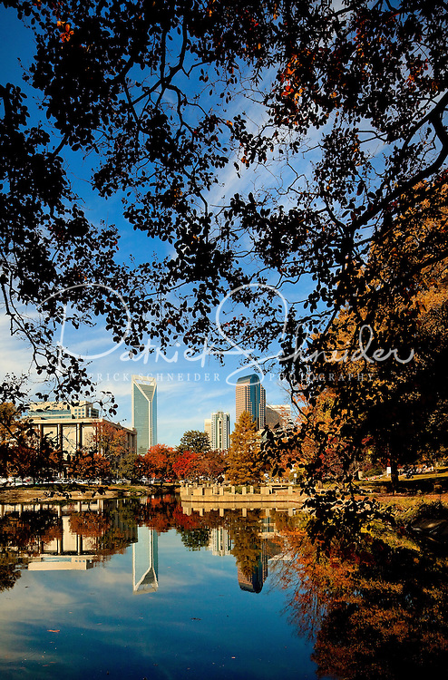 An autumn scene in Charlotte, North Carolina, as shown from Marshall Park. Prominent left in image is the Duke Energy Headquarters tower. Tall on the right is the Wells Fargo tower.