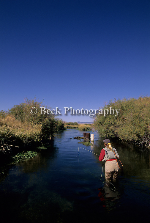 Fly fishing on Poindexter Slough in Montana.