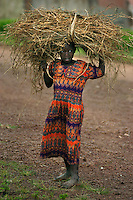 A youthful resident of Bungwe carries a bundle of agricultural crop home from the field in Bungwe, Rwanda. (Rick D'Elia)