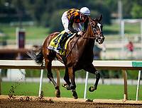 ARCADIA, CA - SEPTEMBER 30: Paradise Woods #4, ridden by Flavien Prat wins the Zenyatta Stakes at Santa Anita Park on September 30, 2017 in Arcadia, California. (Photo by Alex Evers/Eclipse Sportswire/Getty Images)