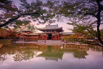 Phoenix Hall, Hoodo or Amida Hall, of Byodo-in, Jodo-shiki garden with a pond in a beautiful surreal sunrise autumn scenery framed by Japanese maple tree branches, Byodoin Buddhist temple in Uji, Kyoto Prefecture, Japan 2017