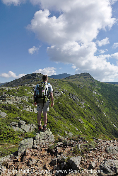 Appalachian Trail - Solo hiker takes in the view of Mount Washington from along the Crawford Path in the White Mountains of New Hampshire USA during the summer months.